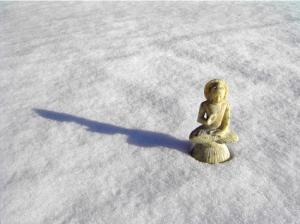 zen-snow